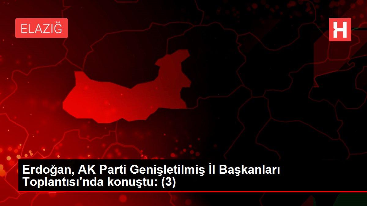 Erdoğan, AK Parti Genişletilmiş İl Başkanları Toplantısı'nda konuştu: (3)