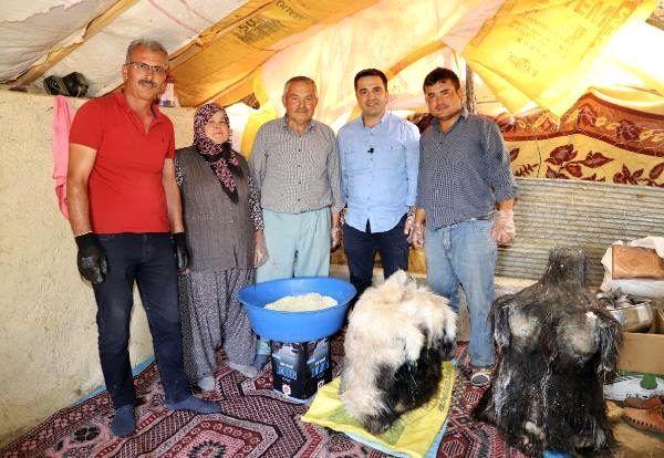 Keçi sütünden yapılan Söğle peyniri, 4 ay kuyuda bekletilip kilosu 90 TL'den satılıyor