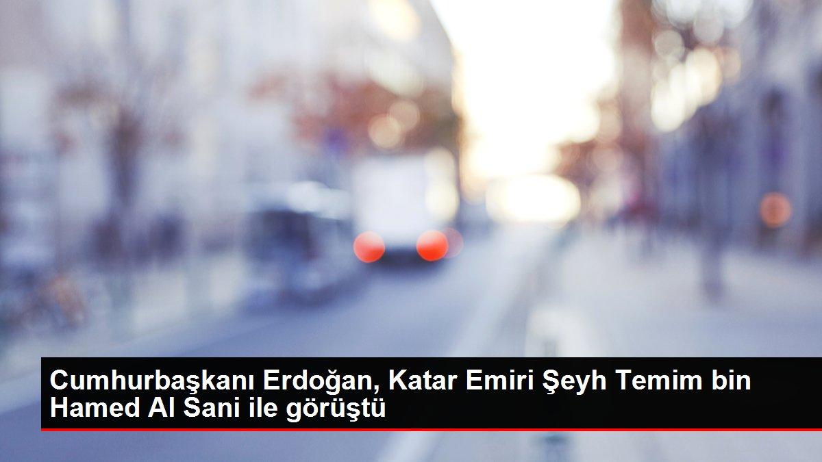 Cumhurbaşkanı Erdoğan, Katar Emiri Şeyh Temim bin Hamed Al Sani ile görüştü