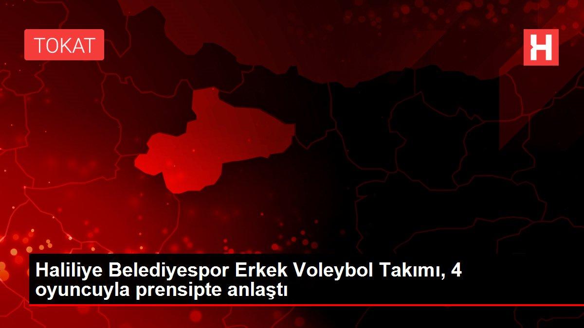 Haliliye Belediyespor Erkek Voleybol Takımı, 4 oyuncuyla prensipte anlaştı