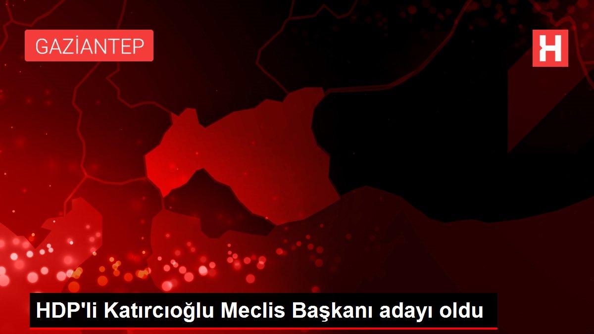 HDP'li Katırcıoğlu Meclis Başkanı adayı oldu