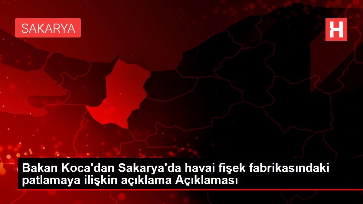 Bakan Koca'dan Sakarya'da havai fişek fabrikasındaki patlamaya ilişkin açıklama Açıklaması