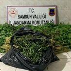 Samsun'da uyuşturucu operasyonunda 2 kişi yakalandı