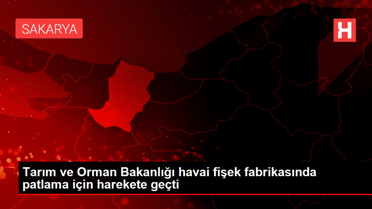 Tarım ve Orman Bakanlığı havai fişek fabrikasında patlama için harekete geçti