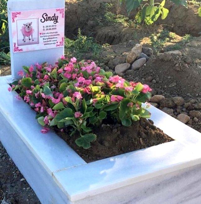 Esra ve Ceyda Ersoy kardeşlerin köpekleri öldü! Yaptırdıkları mezarlık sosyal medyada gündem oldu