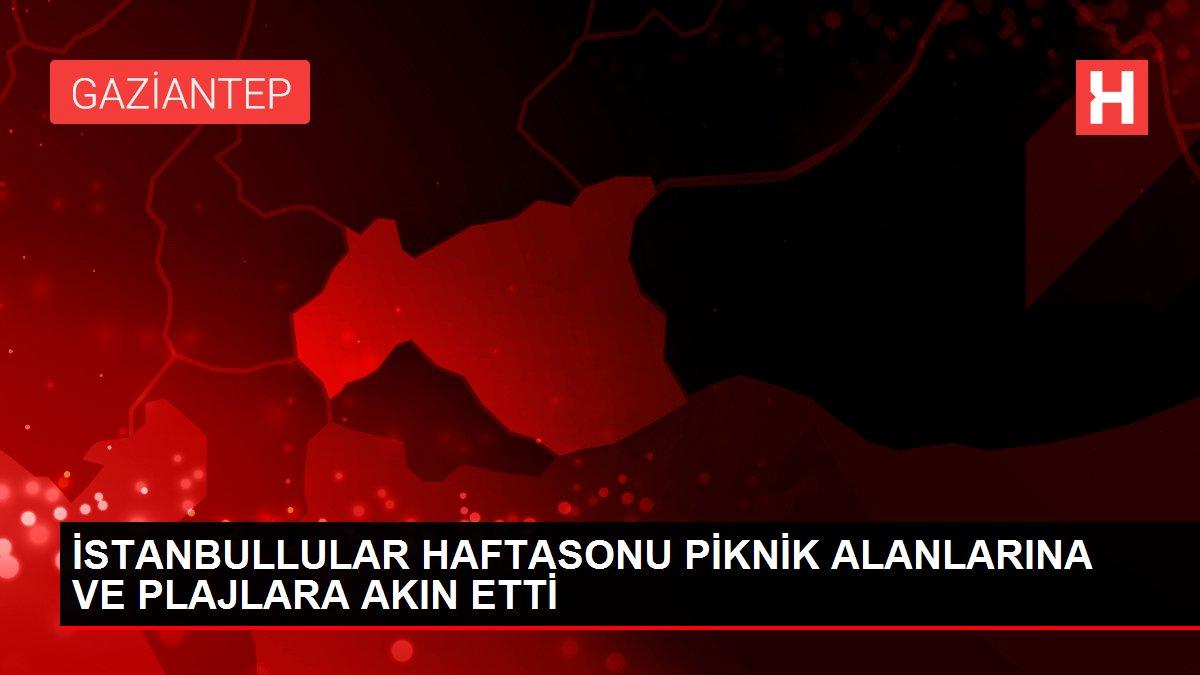 İSTANBULLULAR HAFTASONU PİKNİK ALANLARINA VE PLAJLARA AKIN ETTİ