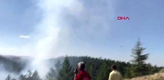Osman Arı: KONYA Ormanlık alanda çıkan yangında 2 hektarlık alan zarar gördü