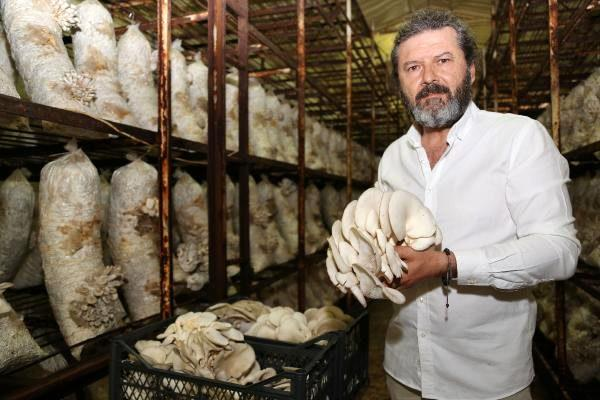 Antalya'nın Korkuteli ilçesi Türkiye'nin mantar üretiminin yüzde 30'unu karşılıyor