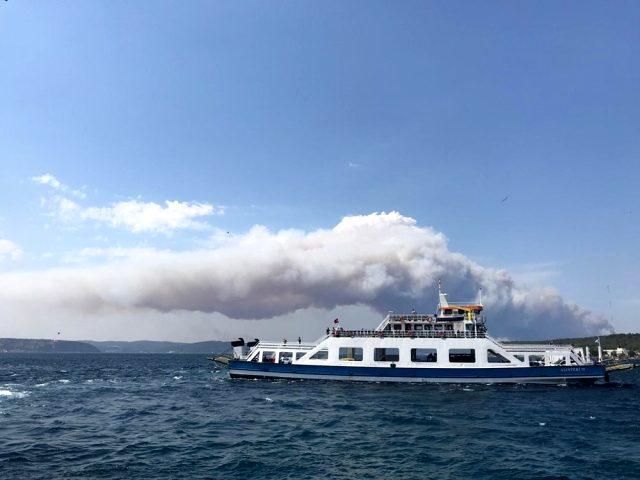 Gelibolu Yarımadası'nda orman yangını! Poyraz yangına müdahaleyi zorlaştırıyor