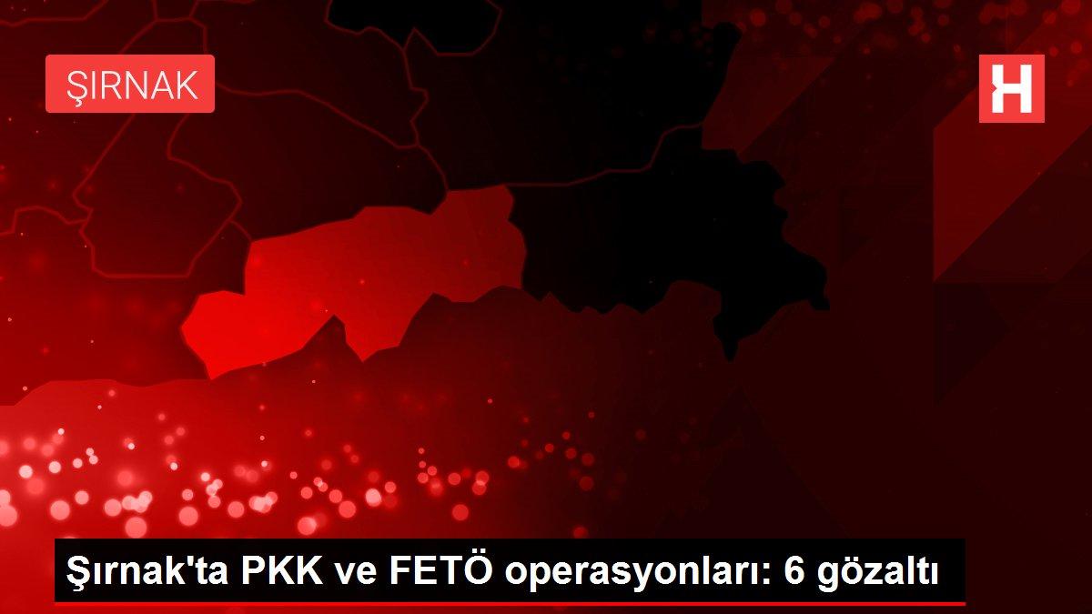 Şırnak'ta PKK ve FETÖ operasyonları: 6 gözaltı