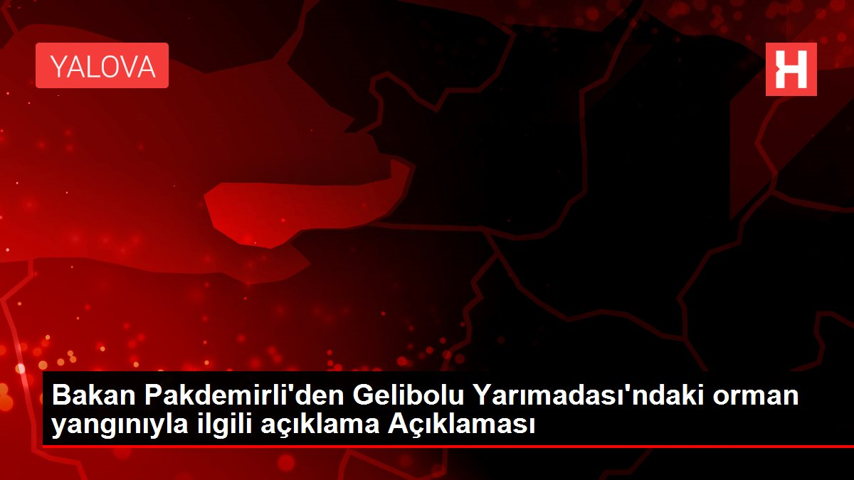 Bakan Pakdemirli'den Gelibolu Yarımadası'ndaki orman yangınıyla ilgili açıklama Açıklaması
