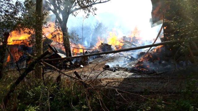 Son Dakika: Artvin Sahlepçiler mahallesinde çıkan yangında köy evleri yanıyor