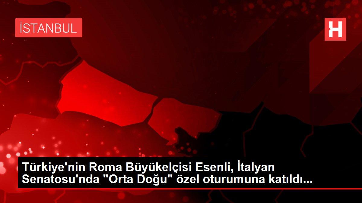 Türkiye'nin Roma Büyükelçisi Esenli, İtalyan Senatosu'nda