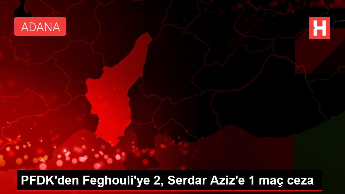 PFDK'den Feghouli'ye 2, Serdar Aziz'e 1 maç ceza