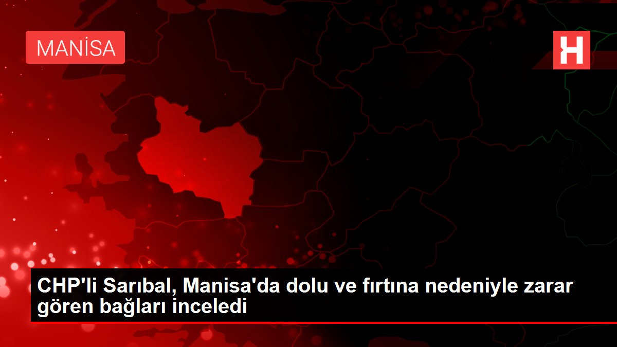 CHP'li Sarıbal, Manisa'da dolu ve fırtına nedeniyle zarar gören bağları inceledi