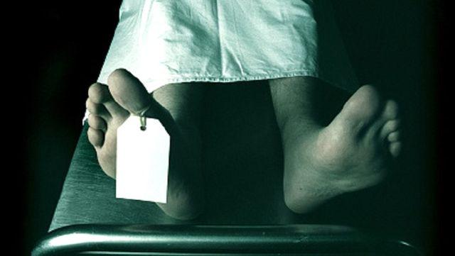 Paris'teki kadavra bağış merkezinde sıçanlar yerlere atılmış cansız bedenleri kemiriyor