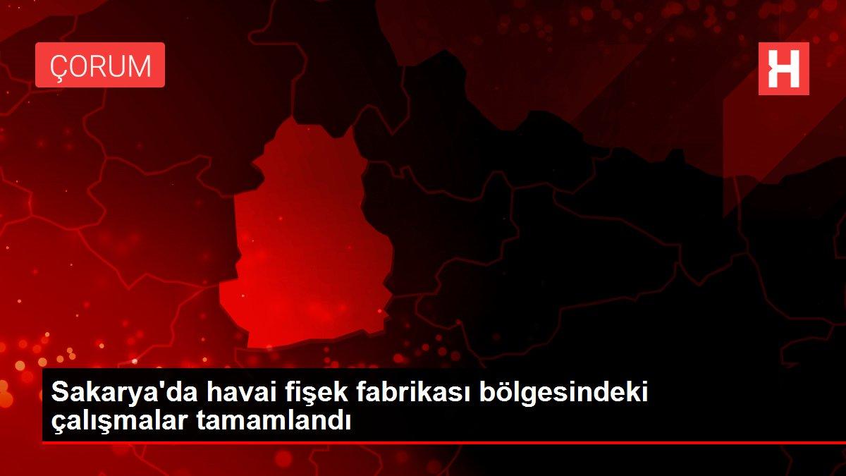 Sakarya'da havai fişek fabrikası bölgesindeki çalışmalar tamamlandı