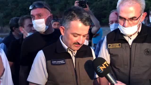 Son Dakika: Heybeliada'da çıkan orman yangını ile ilgili 3 şüpheli gözaltına alındı