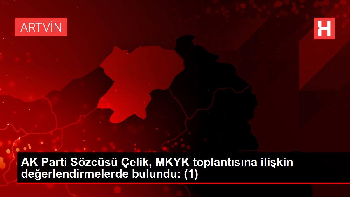 AK Parti Sözcüsü Çelik, MKYK toplantısına ilişkin değerlendirmelerde bulundu: (1)