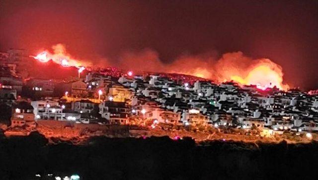 İzmir'de makilik alanda çıkan yangın, yerleşim alanlarına yaklaştı