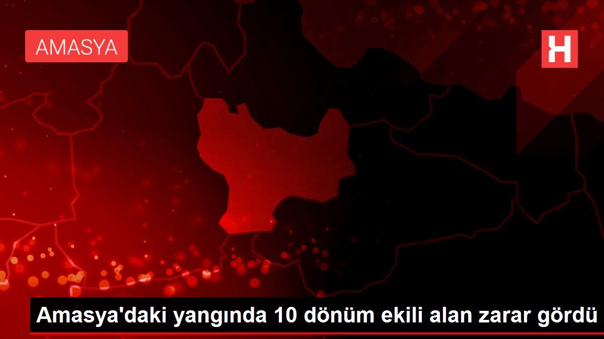 Amasya'daki yangında 10 dönüm ekili alan zarar gördü
