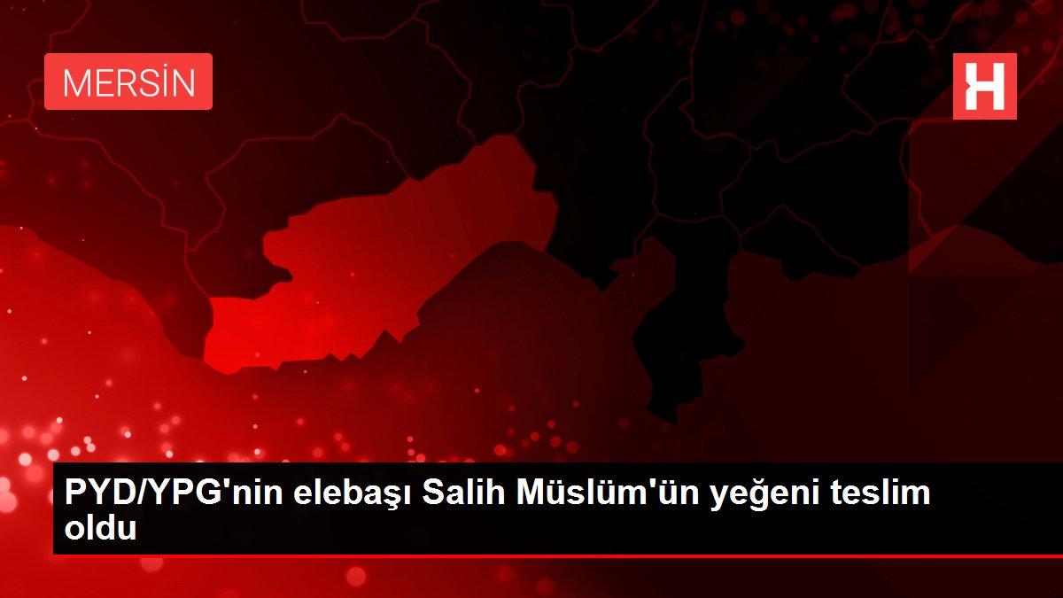 PYD/YPG'nin elebaşı Salih Müslüm'ün yeğeni teslim oldu