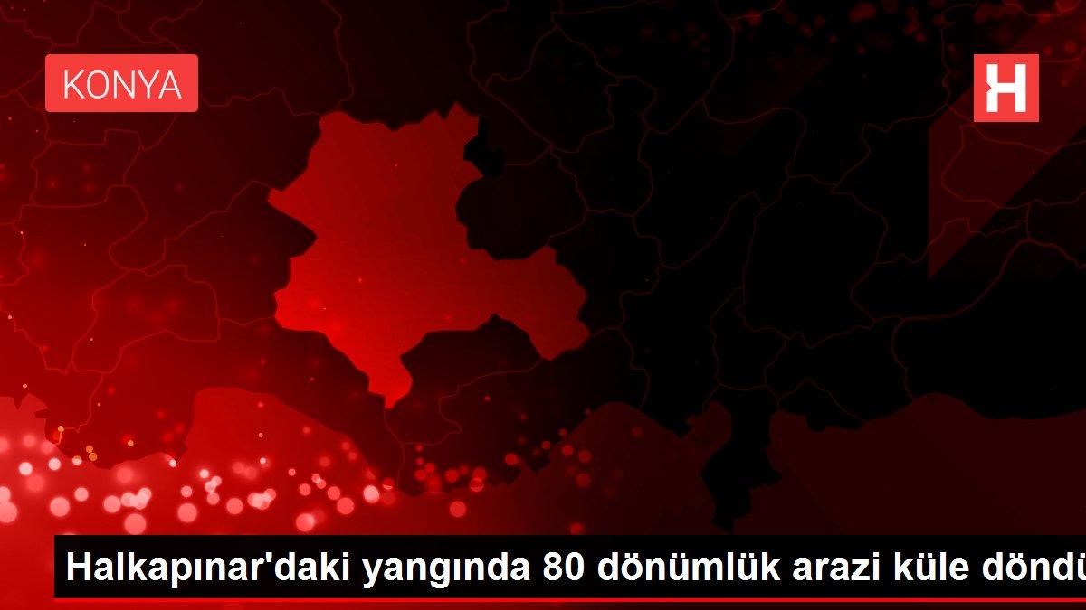 Halkapınar'daki yangında 80 dönümlük arazi küle döndü