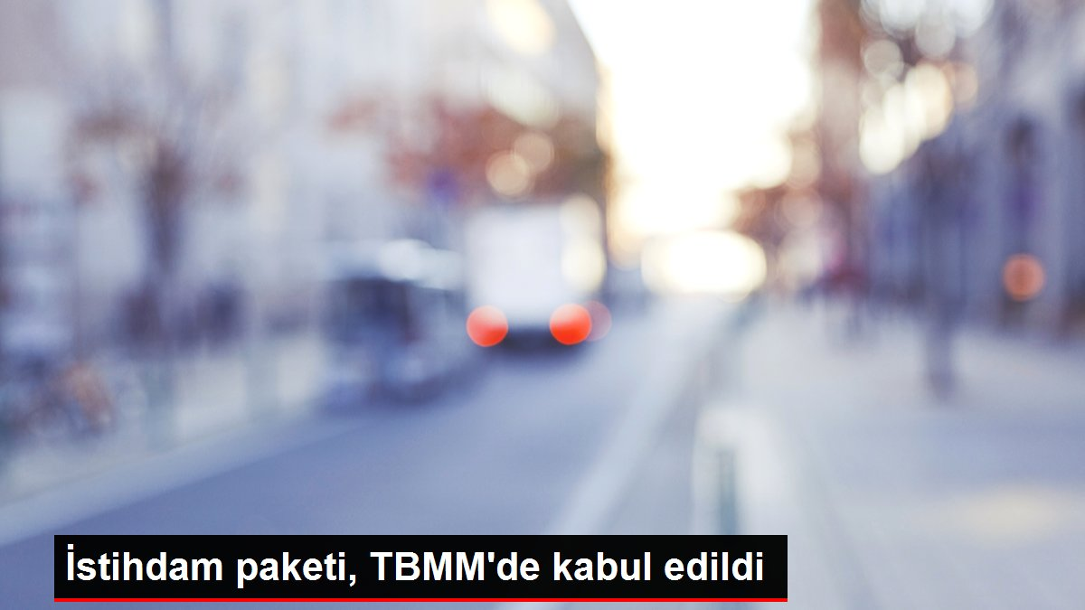 İstihdam paketi, TBMM'de kabul edildi
