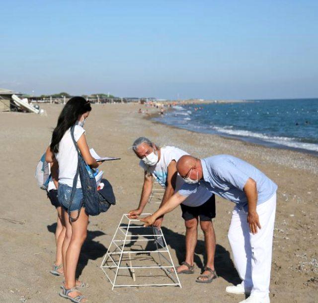 Korona sürecinde Antalya sahillerinde 'caretta caretta' yuvası üç kat arttı