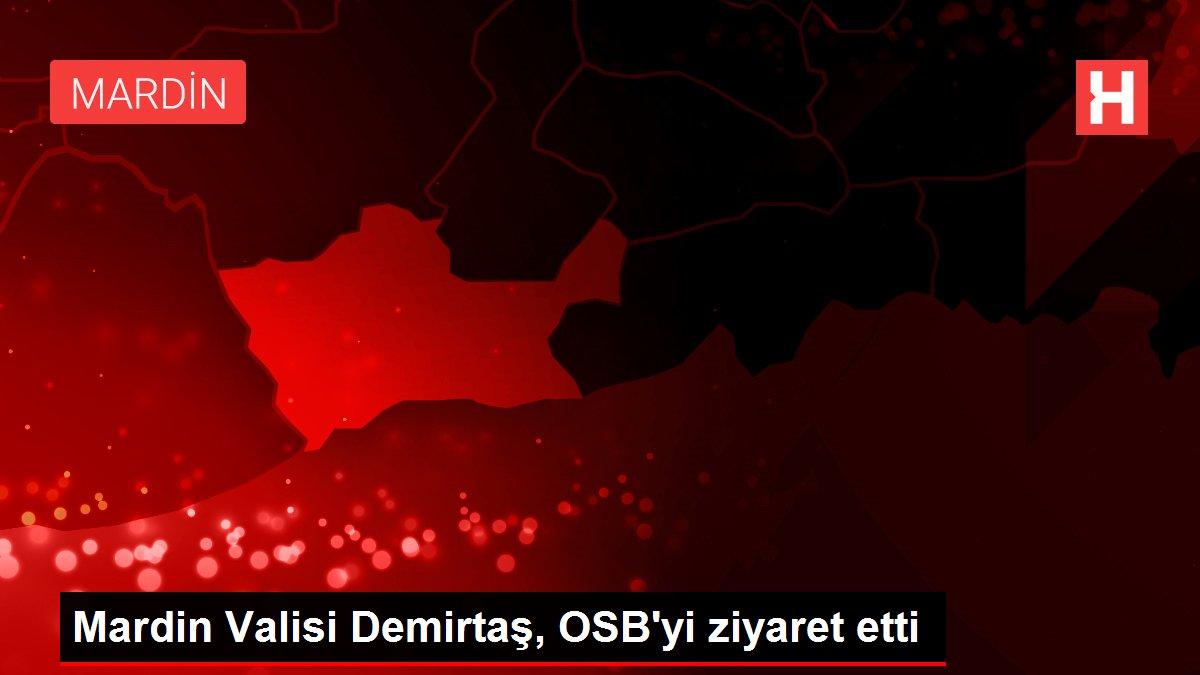 Mardin Valisi Demirtaş, OSB'yi ziyaret etti