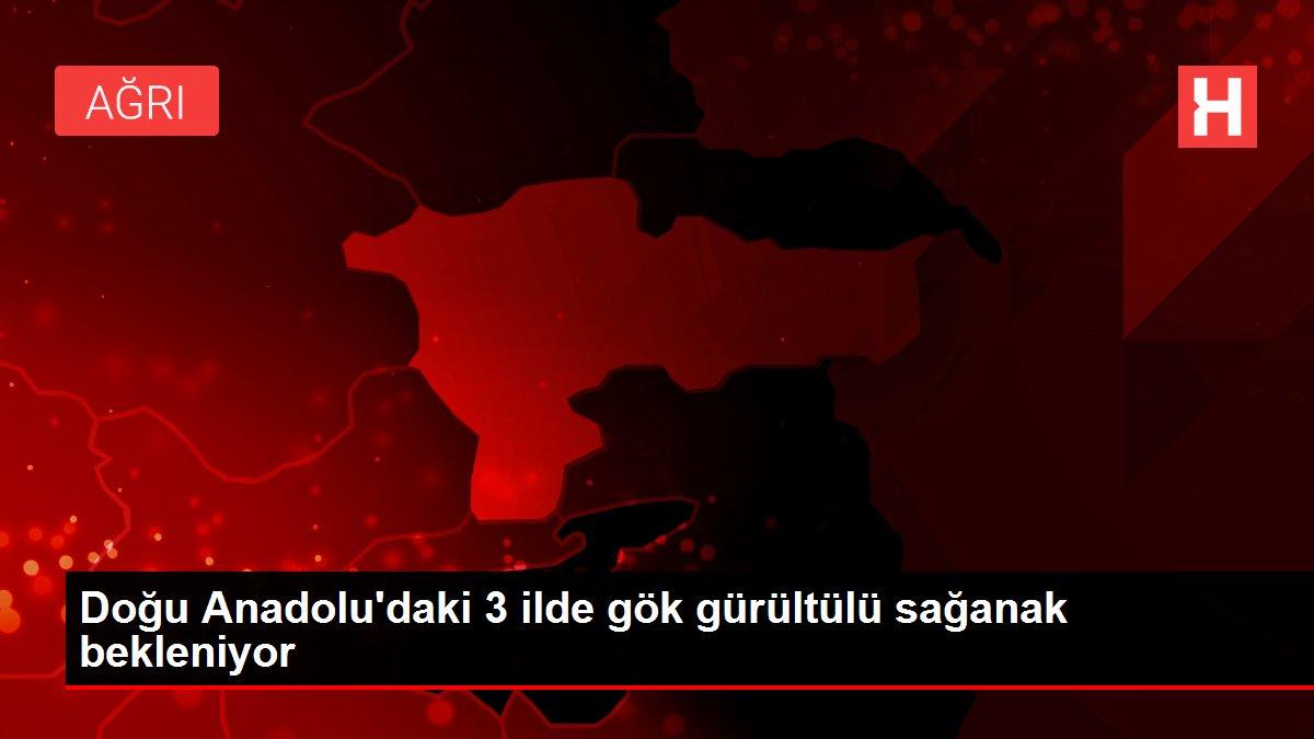 Doğu Anadolu'daki 3 ilde gök gürültülü sağanak bekleniyor