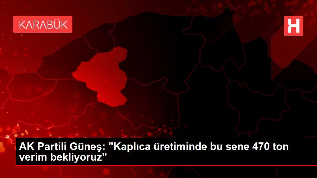 AK Partili Güneş: