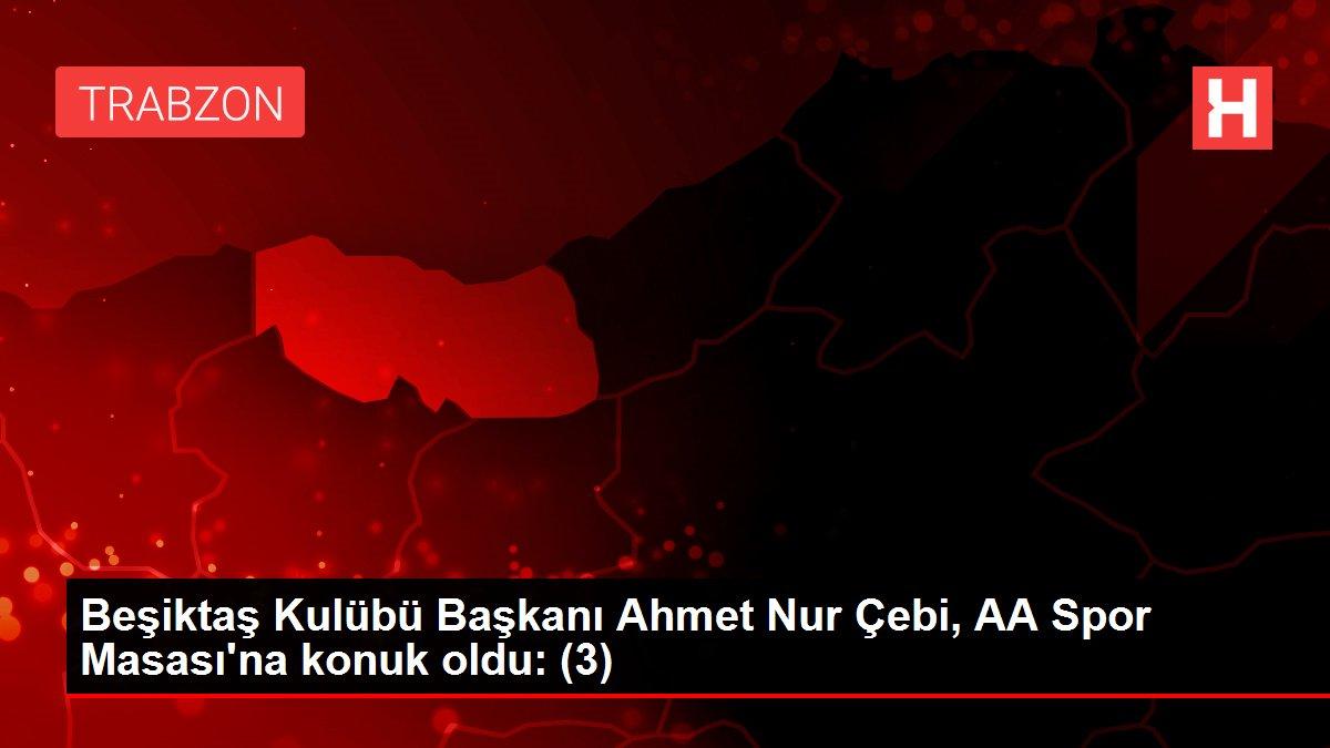 Beşiktaş Kulübü Başkanı Ahmet Nur Çebi, AA Spor Masası'na konuk oldu: (3)