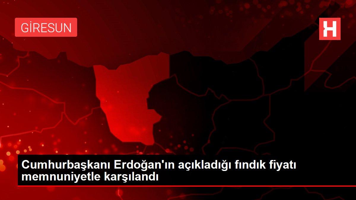 Sektör temsilcileri Erdoğan'ın açıkladığı fındık fiyatlarını memnuniyetle karşıladı