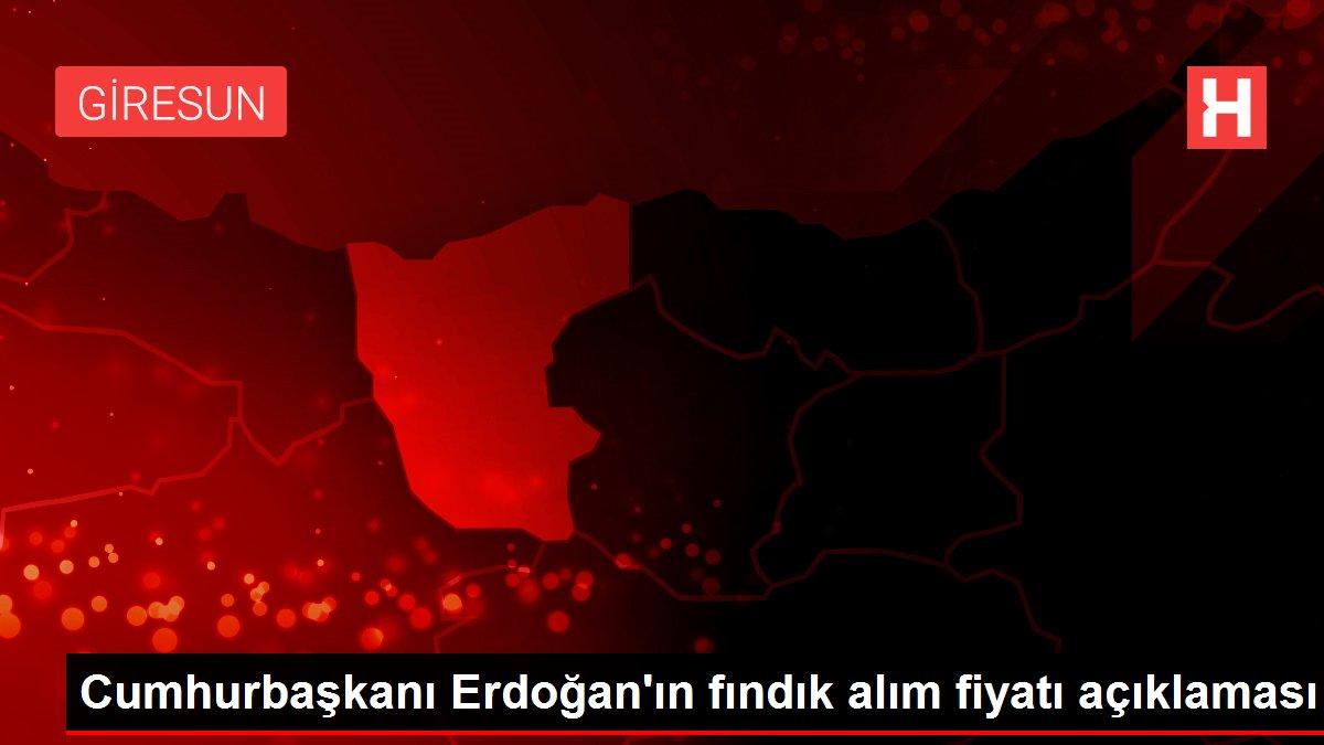 Cumhurbaşkanı Erdoğan'ın fındık alım fiyatı açıklaması