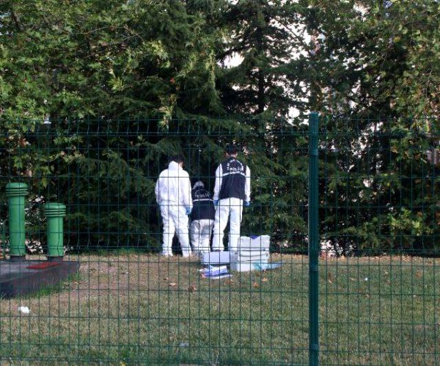 İstanbul'da E-5'in kenarında ağaca asılı cansız beden bulundu