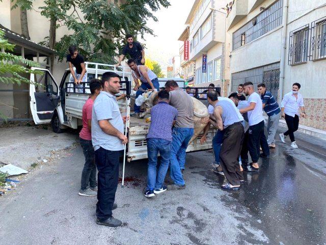 Bursa'da kaçan boğa vatandaşlara zor anlar yaşattı
