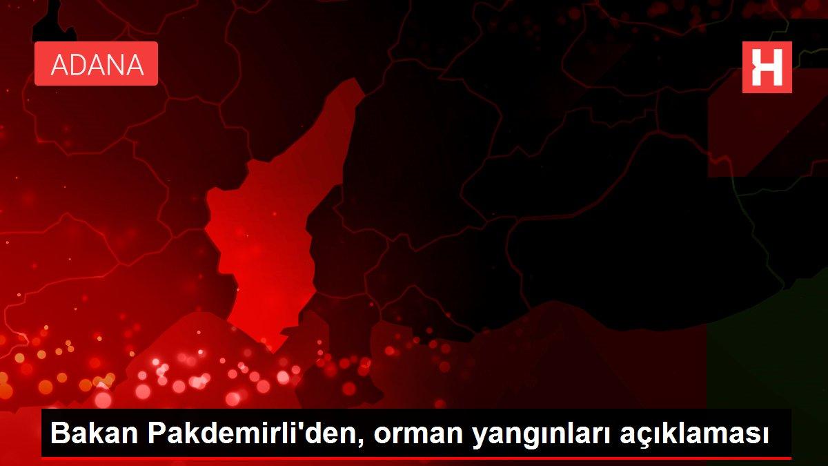 Son dakika haber: Bakan Pakdemirli'den, orman yangınları açıklaması