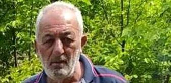 Zonguldak: Ormanda gezerken kalbine yenik düştü