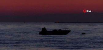 Dünya Çevre Günü: Caretta caretta yavruları denizle buluştu