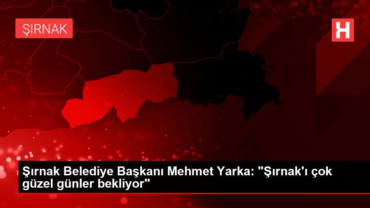 Şırnak Belediye Başkanı Mehmet Yarka: