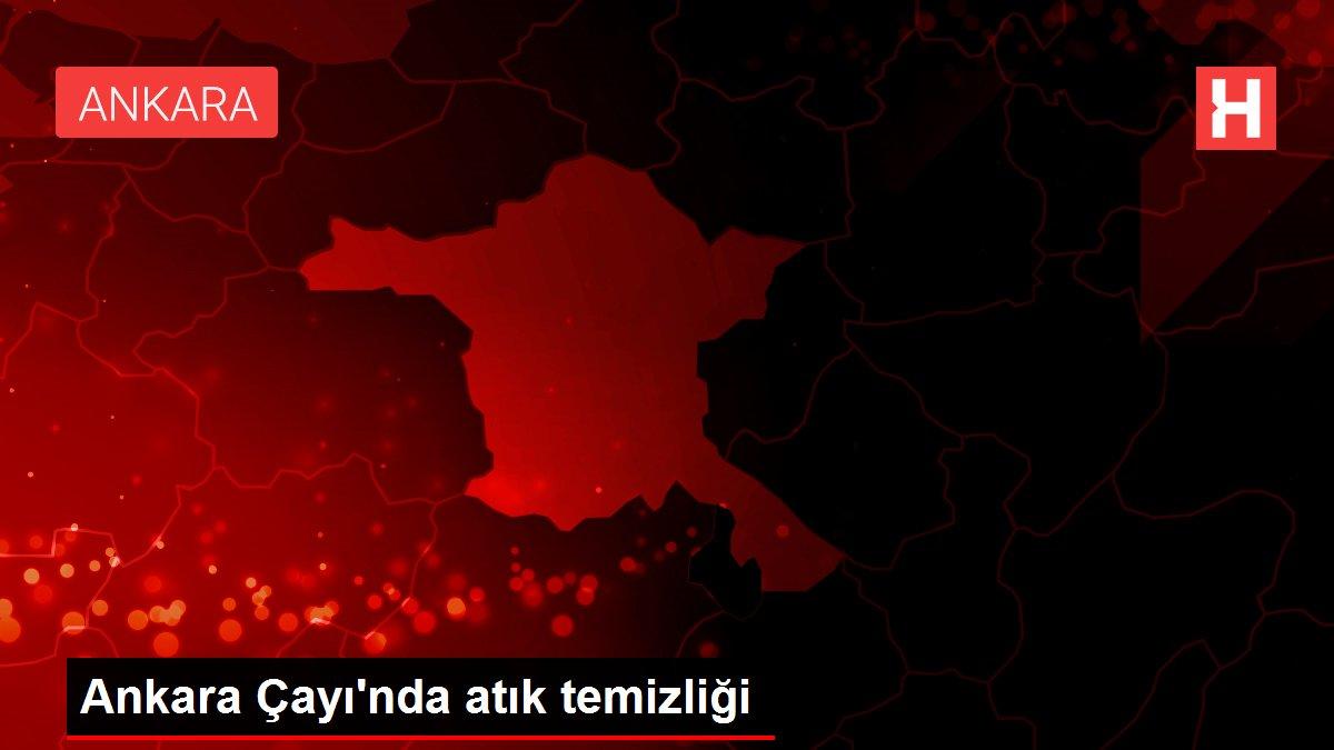 Ankara Çayı'nda atık temizliği