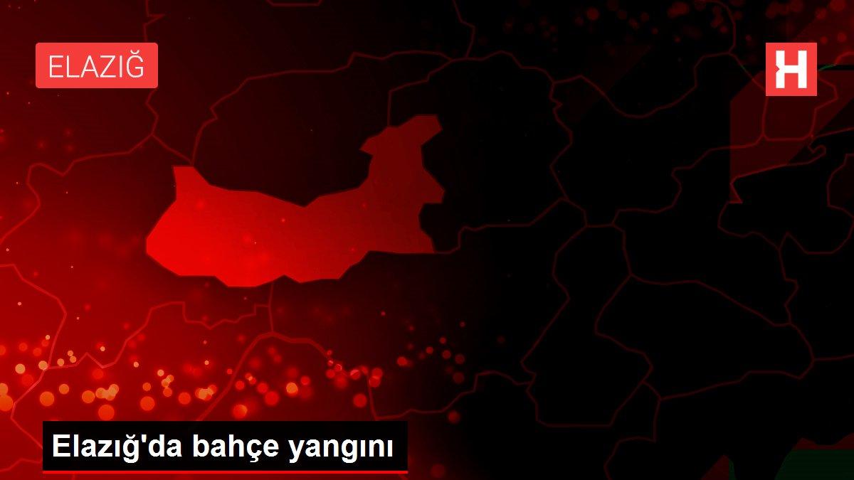 Son dakika haber: Elazığ'da bahçe yangını