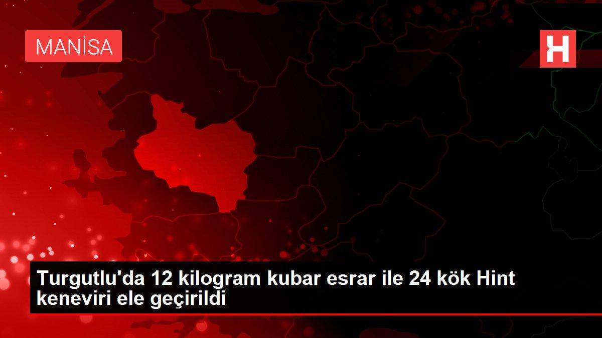 Turgutlu'da 12 kilogram kubar esrar ile 24 kök Hint keneviri ele geçirildi