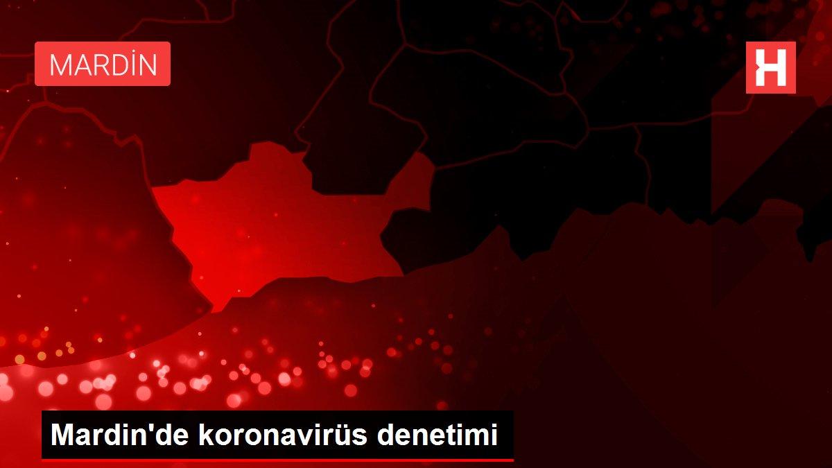 Mardin'de koronavirüs denetimi