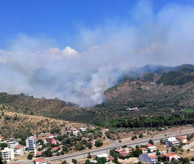 Muğla'daki orman yangınına müdahale sürüyor! Bölgeye çevre illerden destek ekipleri geldi