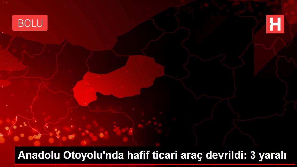 Anadolu Otoyolu'nda hafif ticari araç devrildi: 3 yaralı