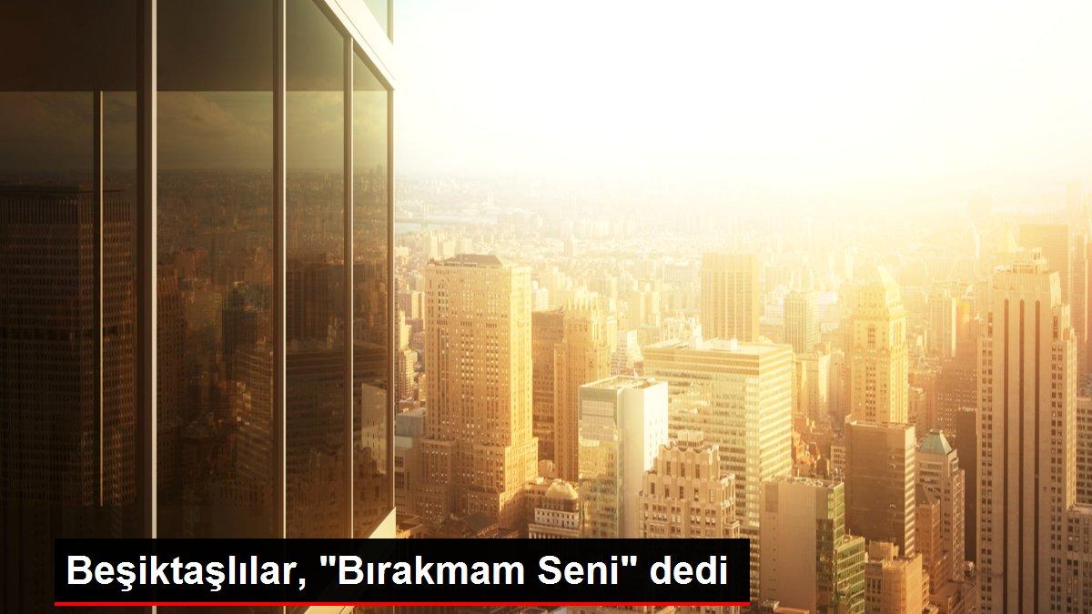 Beşiktaşlılar,