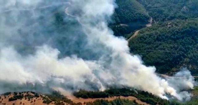 İzmir'de orman yangını çıktı! Yangına havadan ve karadan müdahale ediliyor