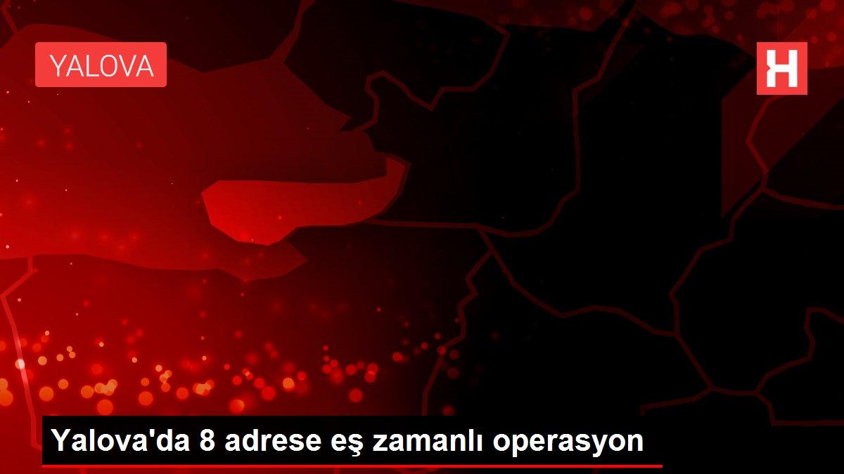 Yalova'da 8 adrese eş zamanlı operasyon